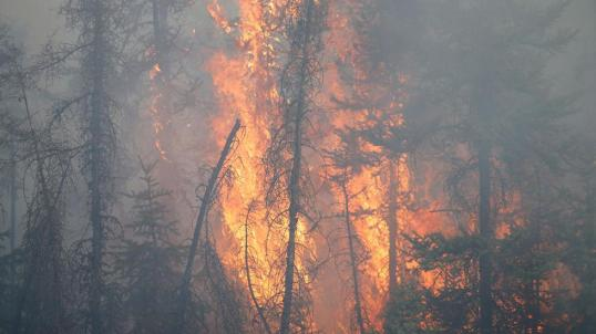 canadawildfire_106